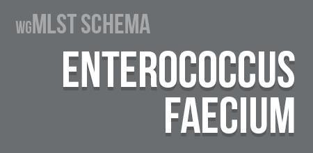 Enterococcus faecium wgMLST schema