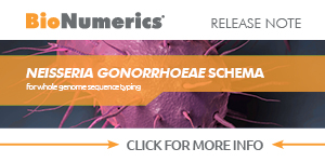 Neisseria gonorrhoeae wgMLST schema