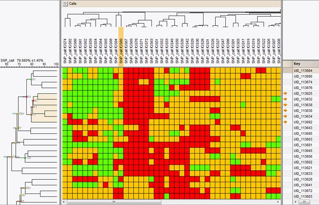 Transversal clustering of SNP calls