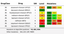 HIV drug resistance report