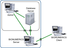 BioNumerics Server scheme