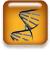 Icon Sequence Data module