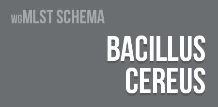 Bacillus cereus wgMLST schema