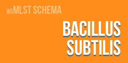 Bacillus subtilis wgMLST schema