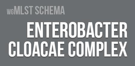 Enterobacter cloacae wgMLST schema