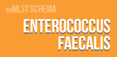 Enterococcus faecalis wgMLST schema