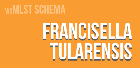 Francisella tularensis wgMLST schema