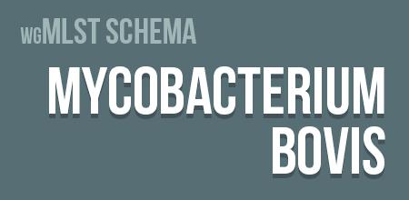Mycobacterium bovis wgMLST schema
