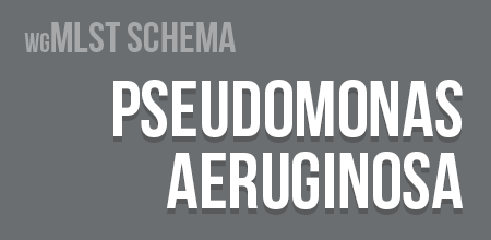 Pseudomonas aeruginosa wgMLST schema