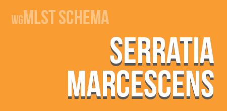 Serratia marcescens wgMLST schema